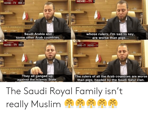 Family, Muslim, and Royal Family: MEMRI-TV  MEMRI-TV M-  Saudi Arabia and  whose rulers, I'm sad to say,  are worse than pigs...  some other Arab countries,  MEMRI-TV  MEMO-IY MEMTY  ST  They all ganged up  against the Islamic State.  The rulers of all the Arab countries are worse  than pigs, headed by the Saudi Salul clan. The Saudi Royal Family isn't really Muslim 😤😤😤😤😤