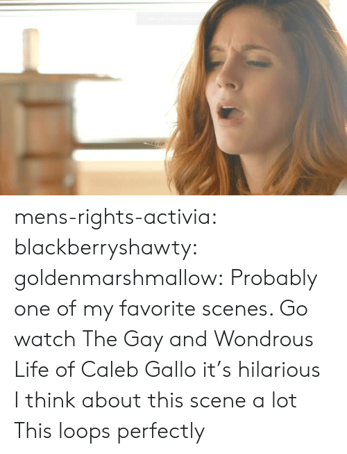 loops: mens-rights-activia: blackberryshawty:  goldenmarshmallow:  Probably one of my favorite scenes. Go watch The Gay and Wondrous Life of Caleb Gallo it's hilarious   I think about this scene a lot   This loops perfectly