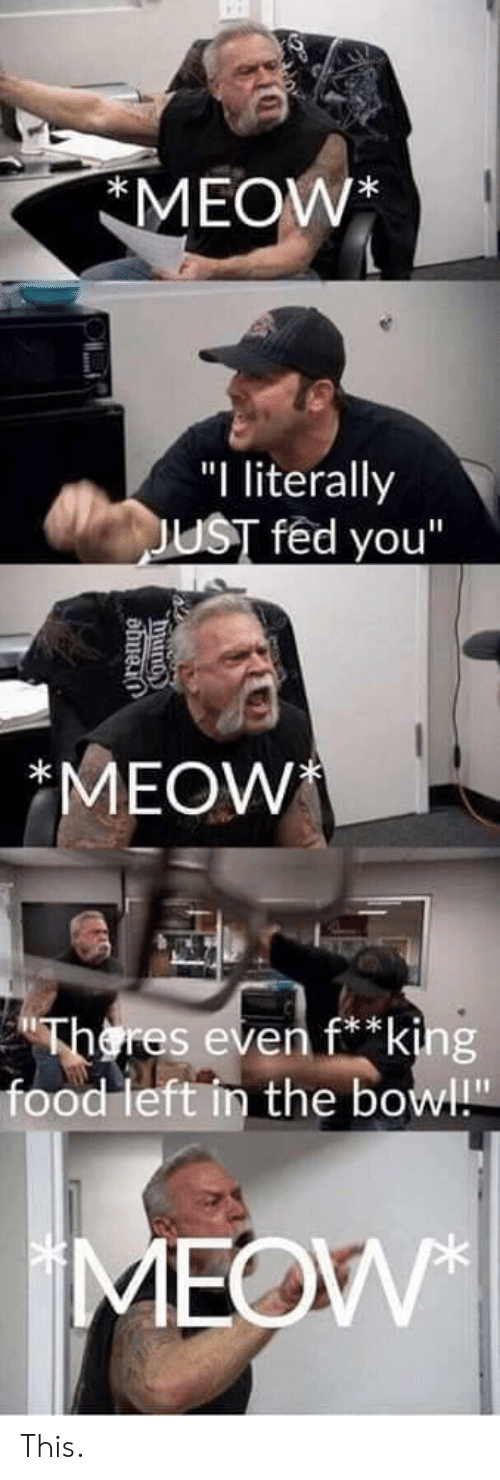 "Food, Bowl, and Eve: MEOW*  ""I literally  UST fed you""  MEOW  res eve  * k  food left in the bowl"" This."