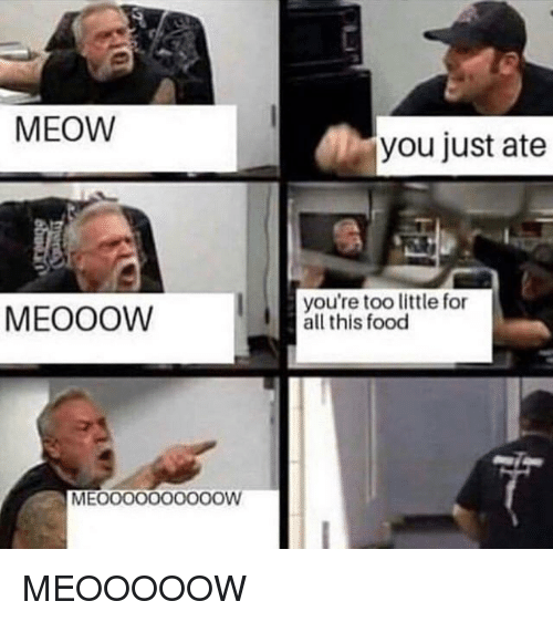 Food, All, and You: MEOW  you just ate  MEOOOW  you're too little for  all this food  MEOOO000000OW MEOOOOOW