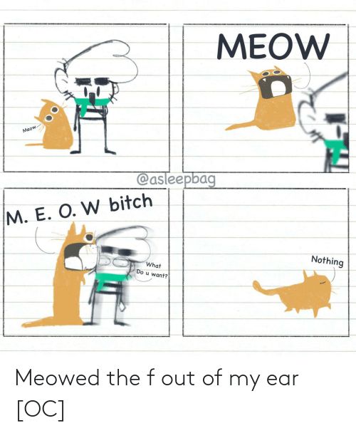 Out Of: Meowed the f out of my ear [OC]