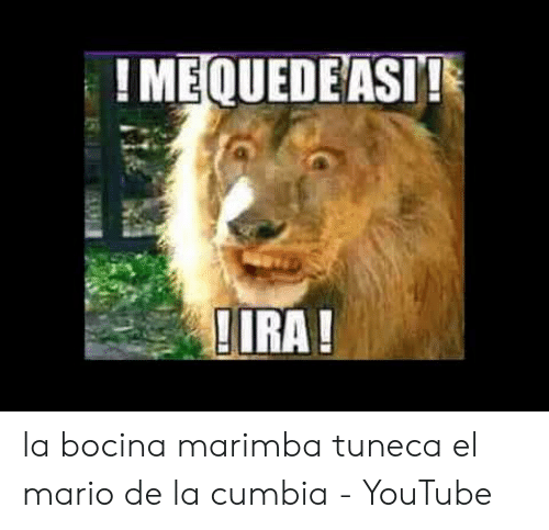 25 Best Memes About Me Quede Asi Ira Meme Me Quede Asi Ira