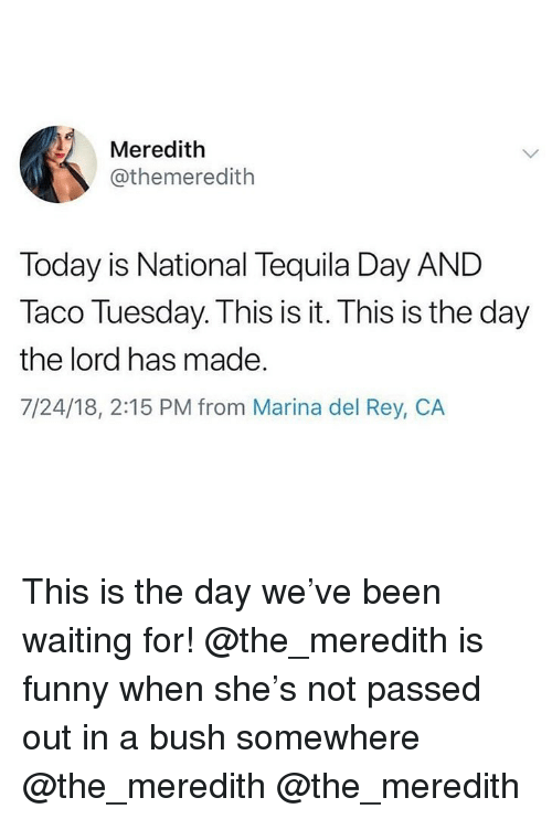 taco tuesday: Meredith  @themeredith  Today is National Tequila Day AND  Taco Tuesday. This is it. This is the day  the lord has made.  7/24/18, 2:15 PM from Marina del Rey, CA This is the day we've been waiting for! @the_meredith is funny when she's not passed out in a bush somewhere @the_meredith @the_meredith