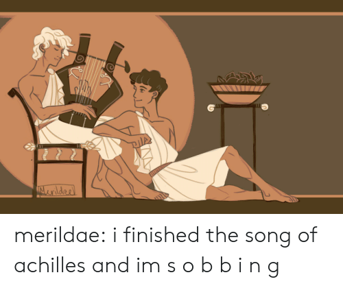 Target, Tumblr, and Blog: merildae: i finished the song of achilles and im s o b b i n g
