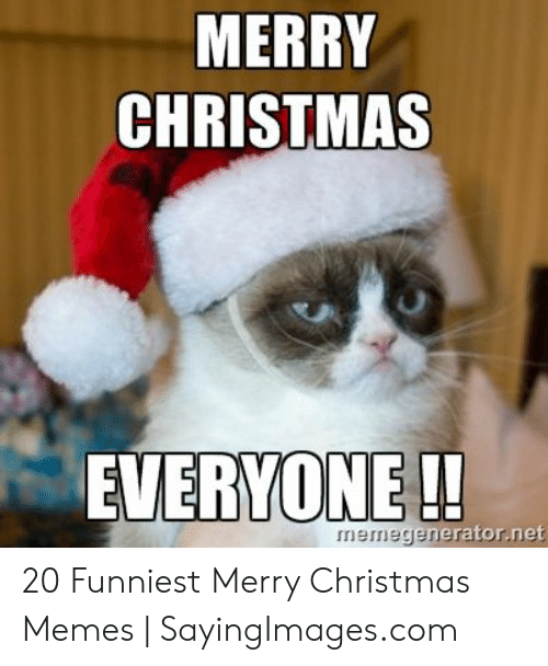 Christmas, Memes, and Merry Christmas: MERRY  CHRISTMAS  EVERYONE !!  rator.net  rnermegeerator.ner 20 Funniest Merry Christmas Memes | SayingImages.com