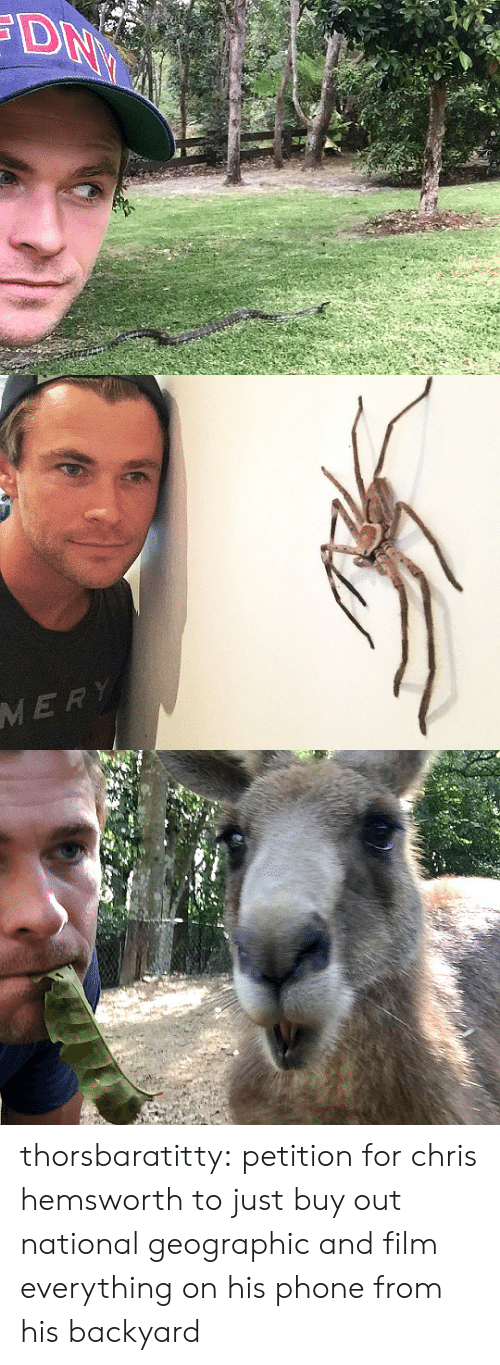 Chris Hemsworth, Phone, and Tumblr: MERY thorsbaratitty: petition for chris hemsworth to just buy out national geographic and film everything on his phone from his backyard