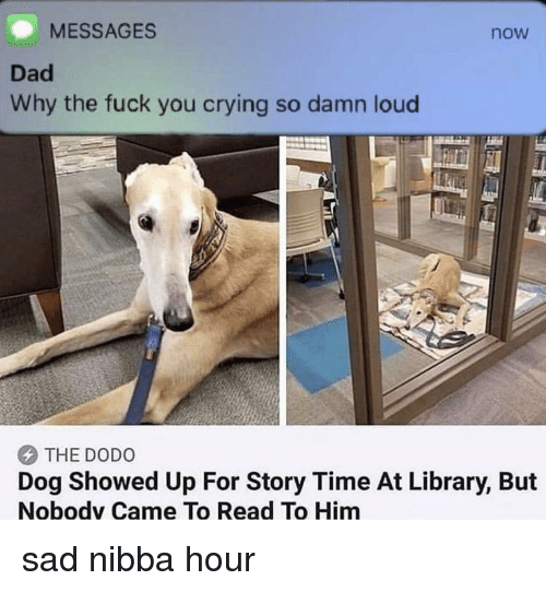 Story Time: MESSAGES  now  Dad  Why the fuck you crying so damn loud  THE DODO  Dog Showed Up For Story Time At Library, But  Nobodv Came To Read To Him sad nibba hour