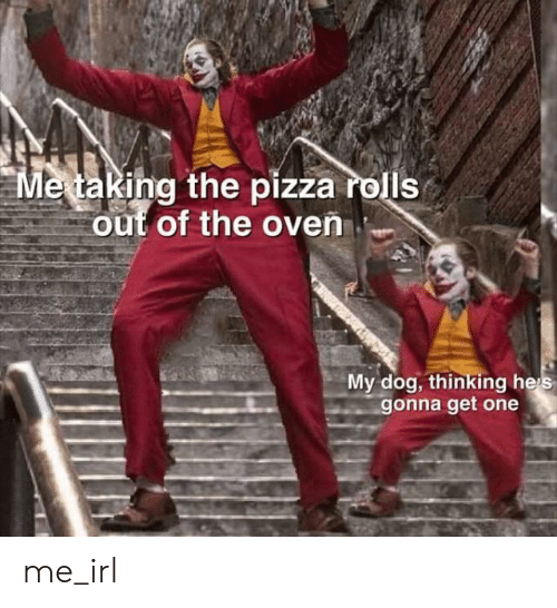 Pizza, Irl, and Me IRL: Metaking the pizza rolls  out of the oven  My dog, thinking heis  gonna get one me_irl