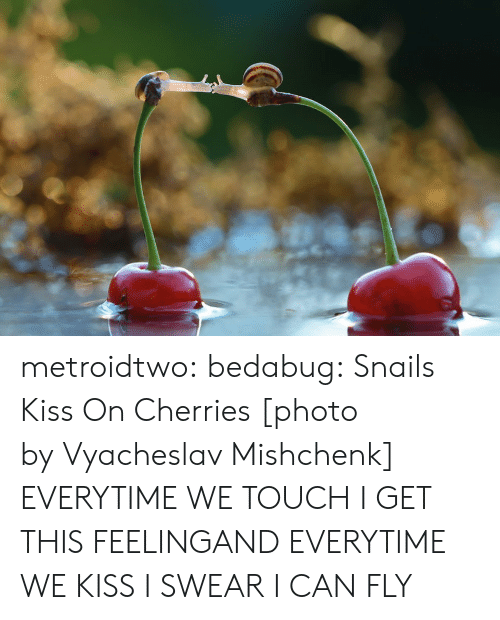 i can fly: metroidtwo:  bedabug:  Snails Kiss On Cherries [photo by Vyacheslav Mishchenk]   EVERYTIME WE TOUCH I GET THIS FEELINGAND EVERYTIME WE KISS I SWEAR I CAN FLY