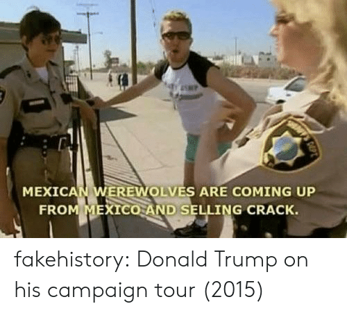 Donald Trump On: MEXICAN WEREWOLVES ARE COMING UP  FRO  XICO AND SELLING CRACK. fakehistory:  Donald Trump on his campaign tour (2015)