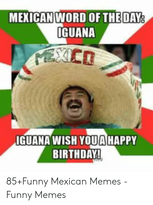 funny mexican memes: MEXICAN WORD OF THEDAY  IGUANA  0  IGUANA WISH YOUAHAPPY  BIRTHDAY! 85+Funny Mexican Memes - Funny Memes