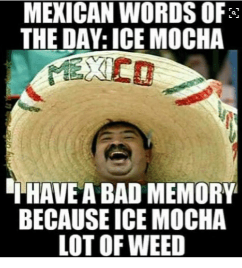 Memes, Mexican Word of the Day, and Mexican: MEXICAN WORDS OF  THE DAY: ICE MOCHA  THAVEA BAD MEMORY  BECAUSE ICE MOCHA  LOT OF WEED