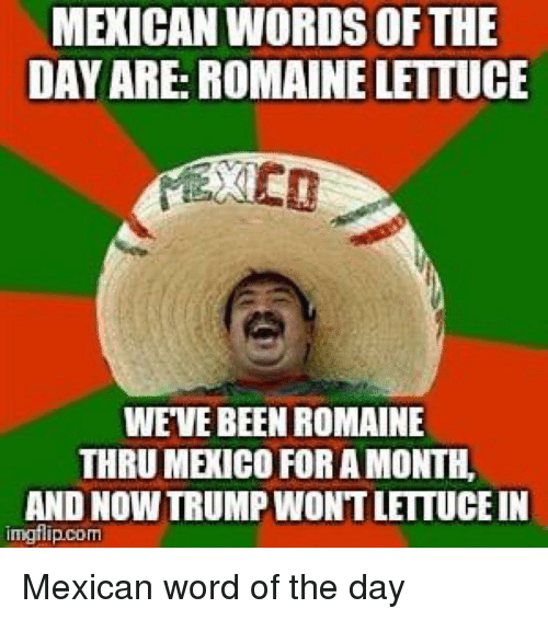 Memes, Mexico, and Trump: MEXICAN WORDS OFTHE  DAY ARE: ROMAINE LETTUCE  WEVE BEEN ROMAINE  THRU MEXICO FOR A MONTH  AND NOW TRUMP WONT LETTUCE IN  imgflip.com Mexican word of the day