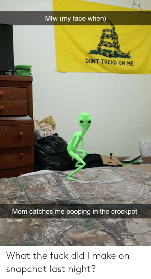 Mfw, Snapchat, and Fuck: Mfw (my face when)  DONT TREAD ON ME  Mom catches me pooping in the crockpot What the fuck did I make on snapchat last night?
