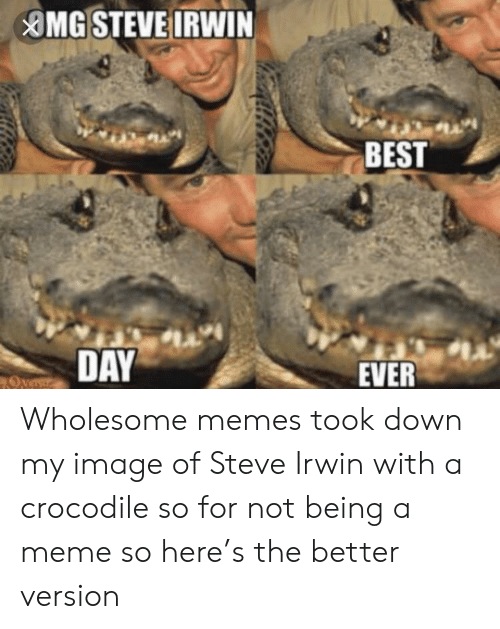 Meme, Memes, and Steve Irwin: MG STEVE IRWIN  BEST  DAY  EVER  Overr Wholesome memes took down my image of Steve Irwin with a crocodile so for not being a meme so here's the better version