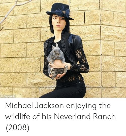 Michael Jackson, Michael, and Jackson: Michael Jackson enjoying the wildlife of his Neverland Ranch (2008)