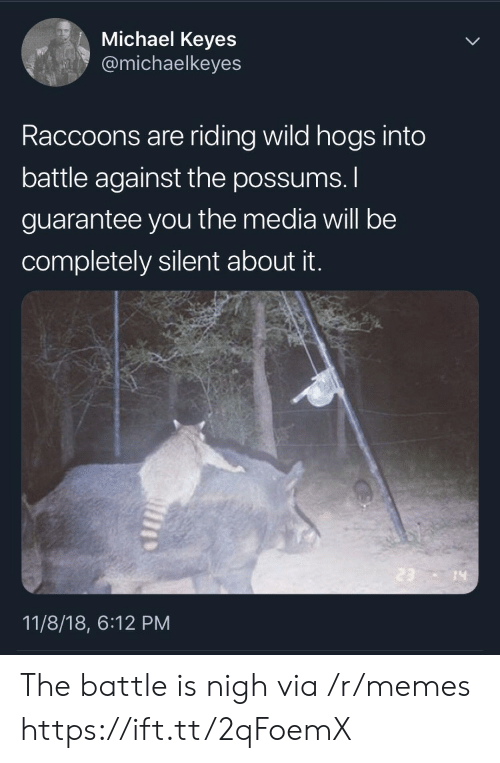 nigh: Michael Keyes  @michaelkeyes  Raccoons are riding wild hogs into  battle against the possums.  guarantee you the media will be  completely silent about it.  14  11/8/18, 6:12 PM The battle is nigh via /r/memes https://ift.tt/2qFoemX