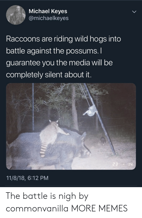 nigh: Michael Keyes  @michaelkeyes  Raccoons are riding wild hogs into  battle against the possums.  guarantee you the media will be  completely silent about it.  14  11/8/18, 6:12 PM The battle is nigh by commonvanilla MORE MEMES