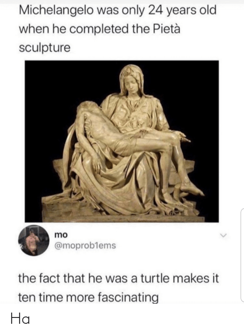 ten: Michelangelo was only 24 years old  when he completed the Pietà  sculpture  mo  @moproblems  the fact that he was a turtle makes it  ten time more fascinating Ha