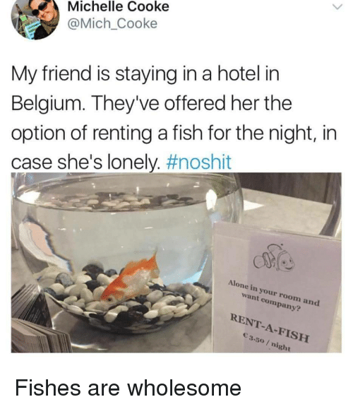 Being Alone, Belgium, and Fish: Michelle Cooke  @Mich_Cooke  My friend is staying in a hotel in  Belgium. They've offered her the  option of renting a fish for the night, in  case she's lonely. #noshit  Alone in your room and  want company?  RENT-A-FISH  3.50/ night Fishes are wholesome
