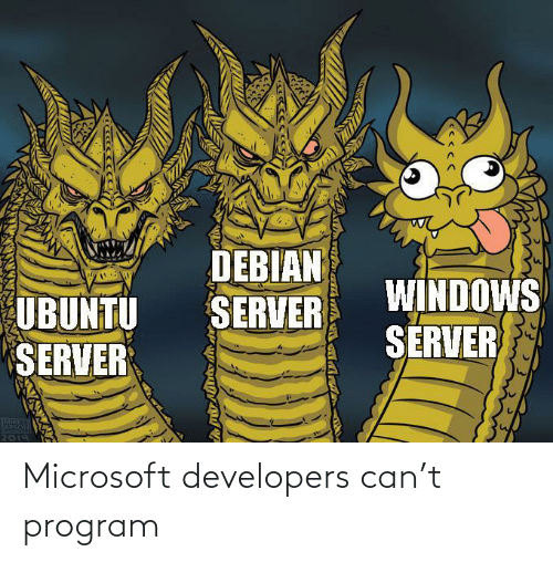 program: Microsoft developers can't program