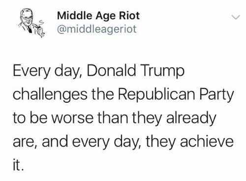 Donald Trump, Memes, and Party: Middle Age Riot  @middleageriot  Every day, Donald Trump  challenges the Republican Party  to be worse than they already  are, and every day, they achieve  it.