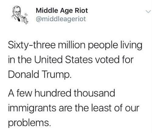 Donald Trump, Memes, and Riot: Middle Age Riot  @middleageriot  Sixty-three million people living  in the United States voted for  Donald Trump.  A few hundred thousand  immigrants are the least of our  problems.
