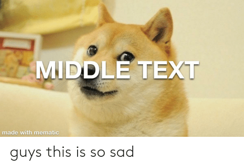Text, Sad, and Made: MIDDLE TEXT  made with mematic guys this is so sad