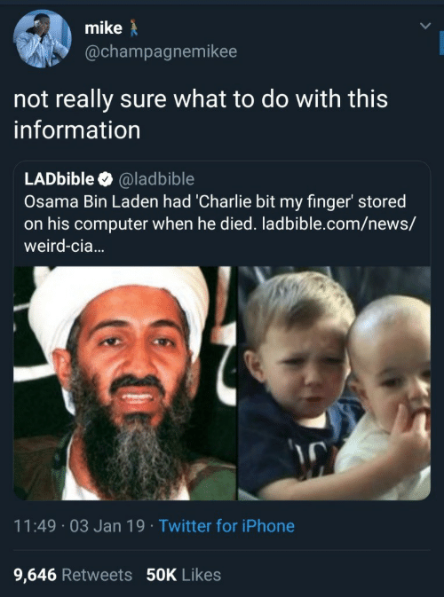 Charlie, Iphone, and News: mike  @champagnemikee  not really sure what to do with this  information  LADbible @ladbible  Osama Bin Laden had 'Charlie bit my finger' stored  on his computer when he died. ladbible.com/news/  weird-cia...  11:49 03 Jan 19 Twitter for iPhone  9,646 Retweets 50K Likes