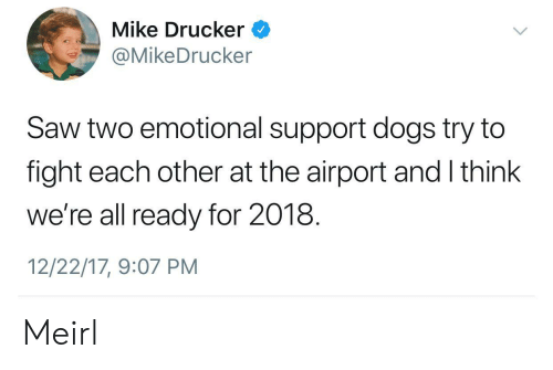 Dogs, Saw, and MeIRL: Mike Drucker  @MikeDrucker  Saw two emotional support dogs try to  fight each other at the airport and I think  we're all ready for 2018.  12/22/17, 9:07 PM Meirl
