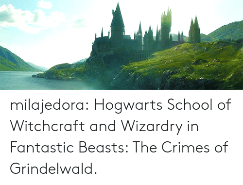 fantastic beasts: milajedora: Hogwarts School of Witchcraft and Wizardry in Fantastic Beasts: The Crimes of Grindelwald.