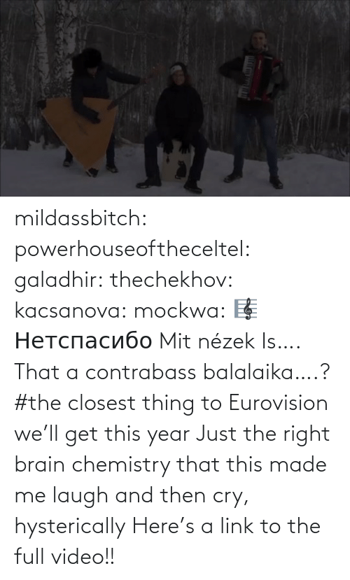 Youtu: mildassbitch: powerhouseoftheceltel:  galadhir:  thechekhov:  kacsanova:  mockwa:    🎼  Нетспасибо  Mit nézek    Is…. That a contrabass balalaika….?    #the closest thing to Eurovision we'll get this year    Just the right brain chemistry that this made me laugh and then cry, hysterically    Here's a link to the full video!!