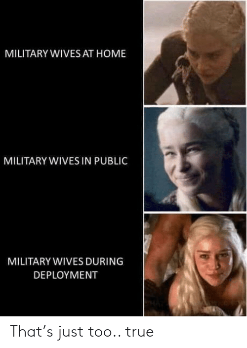 Military: MILITARY WIVES AT HOME  MILITARY WIVES IN PUBLIC  MILITARY WIVES DURING  DEPLOYMENT That's just too.. true