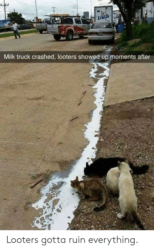 Milk, Truck, and Everything: Milk truck crashed, looters showed up moments after Looters gotta ruin everything.