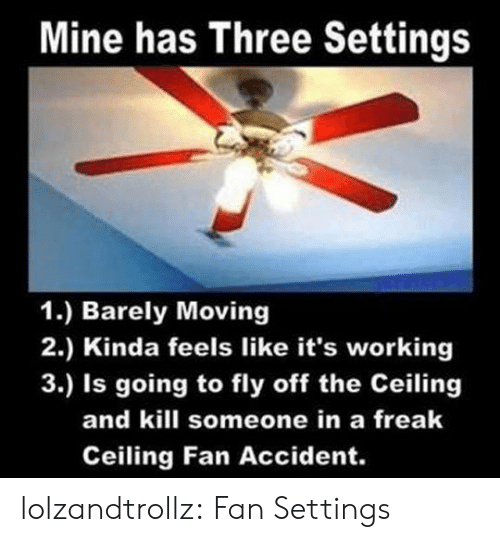 Tumblr, Blog, and Mine: Mine has Three Settings  1.) Barely Moving  2.) Kinda feels like it's working  3.) Is going to fly off the Ceiling  and kill someone in a freak  Ceiling Fan Accident. lolzandtrollz:  Fan Settings
