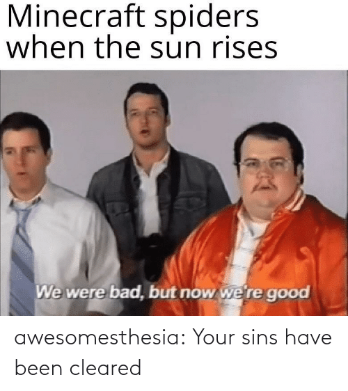 Have Been: Minecraft spiders  when the sun rises  We were bad, but now we're good awesomesthesia:  Your sins have been cleared