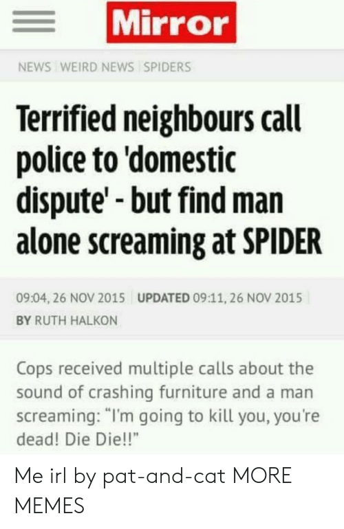 """Furniture: Mirror  NEWS WEIRD NEWS SPIDERS  Terrified neighbours call  police to 'domestic  dispute'-but find man  alone screaming at SPIDER  09:04, 26 NOV 2015  UPDATED 09:11, 26 NOV 2015  BY RUTH HALKON  Cops received multiple calls about the  sound of crashing furniture and a man  screaming: """"I'm going to kill you, you're  dead! Die Die!!"""" Me irl by pat-and-cat MORE MEMES"""