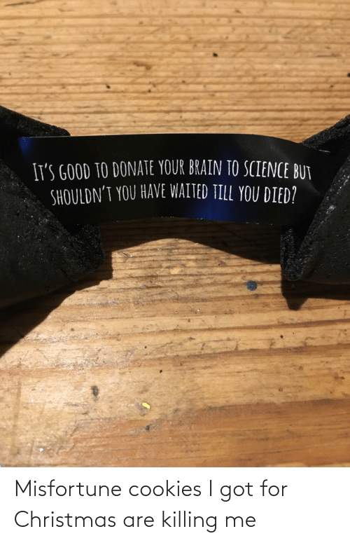 Killing: Misfortune cookies I got for Christmas are killing me