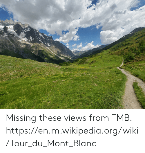 Wikipedia, Wiki, and Mont Blanc: Missing these views from TMB. https://en.m.wikipedia.org/wiki/Tour_du_Mont_Blanc