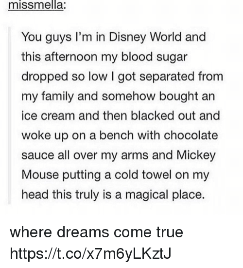 A Magical Place: missmnella:  You guys I'm in Disney World and  this afternoon my blood sugar  dropped so low I got separated from  my family and somehow bought an  ice cream and then blacked out and  woke up on a bench with chocolate  sauce all over my arms and Mickey  Mouse putting a cold towel on my  head this truly is a magical place. where dreams come true https://t.co/x7m6yLKztJ