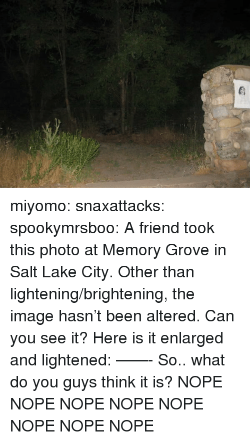 Gif, Target, and Tumblr: miyomo:  snaxattacks:  spookymrsboo:  A friend took this photo at Memory Grove in Salt Lake City. Other than lightening/brightening, the image hasn't been altered. Can you see it? Here is it enlarged and lightened:     ——- So.. what do you guys think it is?  NOPE NOPE NOPE NOPE NOPE NOPE NOPE NOPE