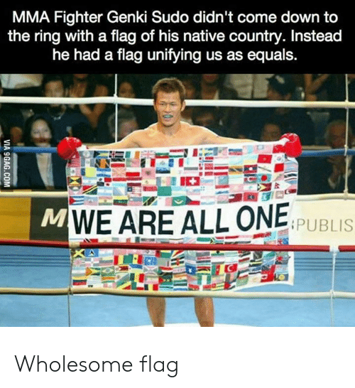 Come Down: MMA Fighter Genki Sudo didn't come down to  the ring with a flag of his native country. Instead  he had a flag unifying us as equals.  MWE ARE ALL ONE  PUBLIS  VIA 9GAG.COM Wholesome flag