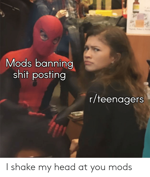 Head, Shit, and Mods: Mods banning  shit posting  r/teenagers I shake my head at you mods