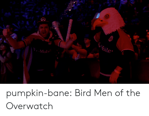 Bane: Moli pumpkin-bane: Bird Men of the Overwatch