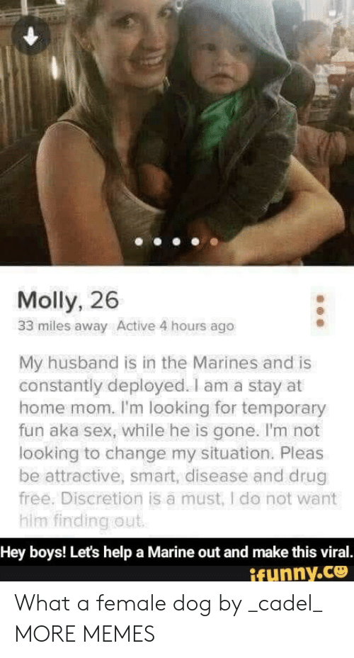 molly: Molly, 26  33 miles away Active 4 hours ago  My husband is in the Marines and is  constantly deployed. I am a stay at  home mom. I'm looking for temporary  fun aka sex, while he is gone. I'm not  looking to change my situation. Pleas  be attractive, smart, disease and drug  free. Discretion is a must, I do not want  him finding out  Hey boys! Let's help a Marine out and make this viral.  ifunny.co What a female dog by _cadel_ MORE MEMES