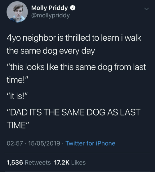 "Dad, Iphone, and Molly: Molly Priddy  @mollypriddy  4yo neighbor is thrilled to learn i walk  the same dog every day  ""this looks like this same dog from last  time!""  ""it is!""  'DAD ITS THE SAME DOG AS LAST  TIME""  02:57 15/05/2019 Twitter for iPhone  1,536 Retweets 17.2K Likes"