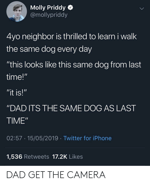 "Dad, Iphone, and Molly: Molly Priddy Q  @mollypriddy  4yo neighbor is thrilled to learn i walk  the same dog every day  ""this looks like this same dog from last  time!""  ""DAD ITS THE SAME DOG AS LAST  TIME""  02:57 15/05/2019 Twitter for iPhone  1,536 Retweets 17.2K Likes DAD GET THE CAMERA"