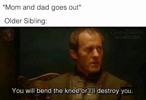 Older Sibling: Mom and dad goes out*  Older Sibling:  GAME of THRONES  SHAMEPOSTING  You will bend the knee or lll destroy you.