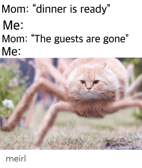 """MeIRL, Mom, and Gone: Mom: """"dinner is ready""""  Me:  Mom: """"The guests are gone""""  Me:  7 meirl"""