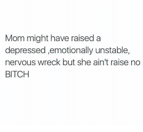 wreck: Mom might have raised a  depressed ,emotionally unstable,  nervous wreck but she ain't raise no  BITCH